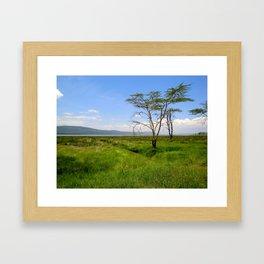 Lush Lake Nakuru Framed Art Print