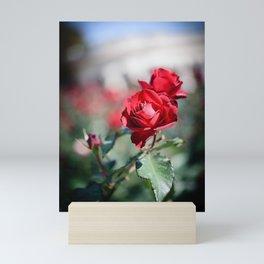 Red Roses Mini Art Print
