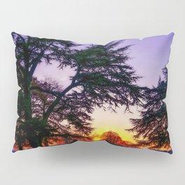 Sunset landscape Pillow Sham