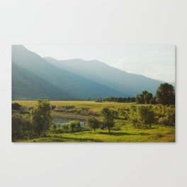 Wading Deer Canvas Print