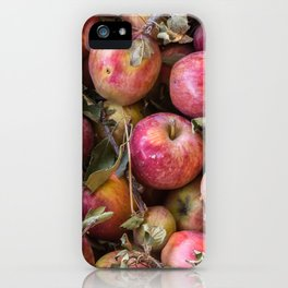 Pile of freshly picked organic farm apples with imperfections iPhone Case