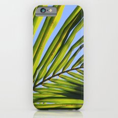 Palm Frond iPhone 6s Slim Case
