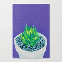 succulent Canvas Prints featuring Succulent by marlene holdsworth