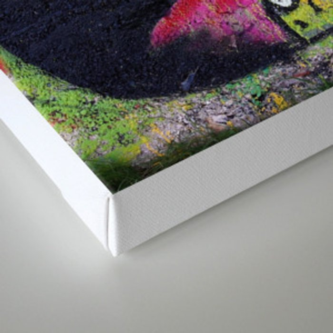 MONSTRE Canvas Print