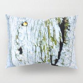 Weathered Barn Wall Wood Texture Pillow Sham