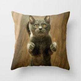 GRAY CAT STANDING IN TWO FEET Throw Pillow