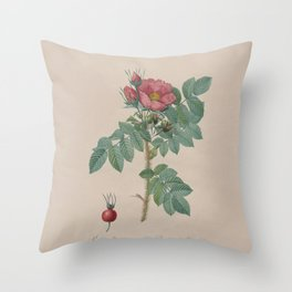 Rosa JP Redoute Throw Pillow