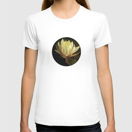 White water lilies 5 T-shirt