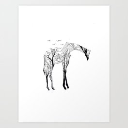 Camelopardalis Art Print