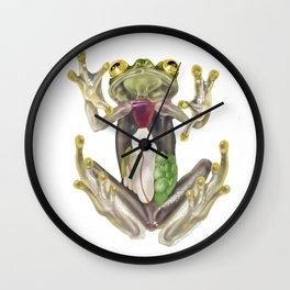 Glass Frog Anatomical Illustration Wall Clock