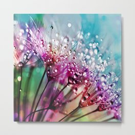 Dewdrops & Rainbows Metal Print