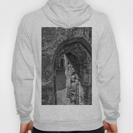 Through The Portal Hoody
