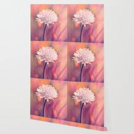 Chive blossom Wallpaper