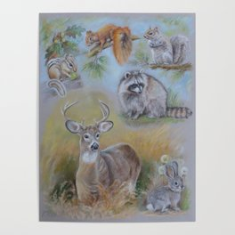 North American Mammals Wildlife Animal collage Pastel drawing Squirrel Raccoon Chipmunk Deer Rabbit Poster