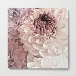 Romantic Pastel Dahlias Metal Print