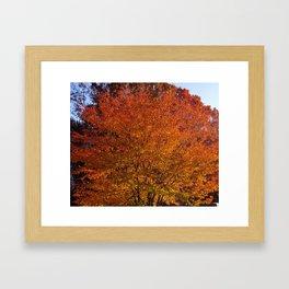 Autumn in the Hudson Valley, New York Framed Art Print