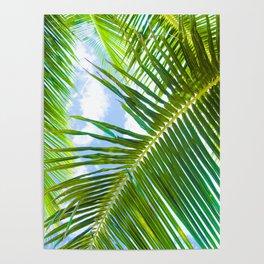 Aloha Lāhainā Palms Maui Hawaii Poster