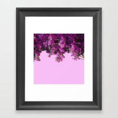 BOUGAINVILLEA (flowers collection) Framed Art Print