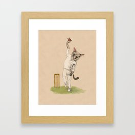 Possum spinner - Googly eyes and googly deliveries. Framed Art Print
