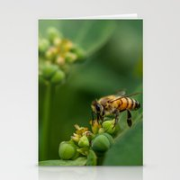 bees Stationery Cards featuring Bees by Gustavo Aragundi