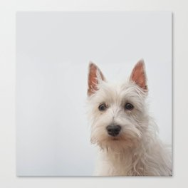 Sweet puppy Canvas Print