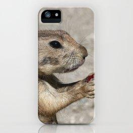 Prairiedog_20170401_by_JAMFoto iPhone Case