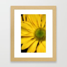 sunflowers2 Framed Art Print