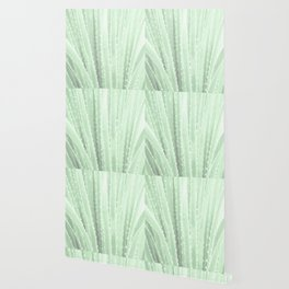 """Green Agave"" by Murray Bolesta! Wallpaper"