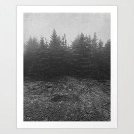 standing in the mist Art Print