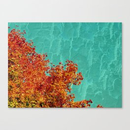 The beautiful fall. Canvas Print