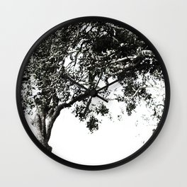 South African Trees Collection Wall Clock