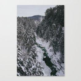 Winter in Vermont Canvas Print