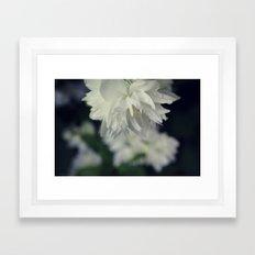 White Blossom Dew Framed Art Print