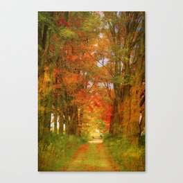 the way to paradise Canvas Print