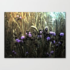 Hidden Fields Canvas Print