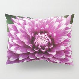 Morado Pillow Sham