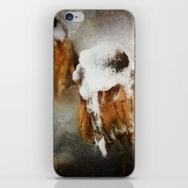 Summers End iPhone Skin