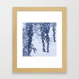 The wisteria of Targassonne Framed Art Print