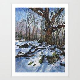 Winter Stories Art Print