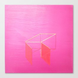Little Boxes Exploded fuchsia & gold Canvas Print