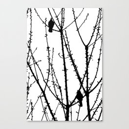Two Birds Canvas Print
