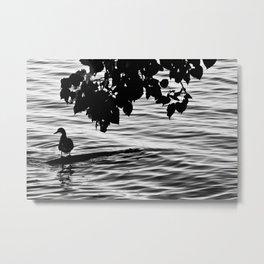 Sunk Bridges - Photo Metal Print