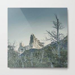 Fitz Roy Mountain, el Chalten - Patagonia - Argentina Metal Print