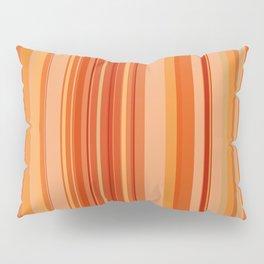 Taos Stripe Pillow Sham