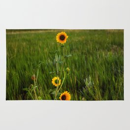 Sunflowers on the Western Prairie - Flowers and Landscape Near Scottsbluff Nebraska Rug