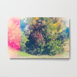 Beauty for Escape Metal Print