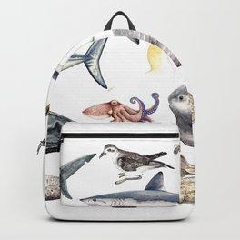 Marine wildlife Backpack