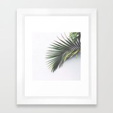 palm leaves - los angeles, ca Framed Art Print