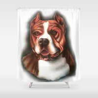 pitbull Shower Curtains featuring Pitbull Pride by Chris Furguson