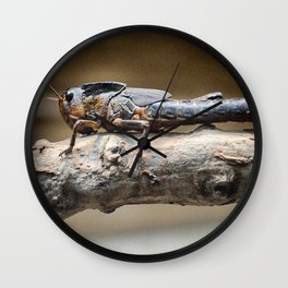 Grasshopper Wall Clock